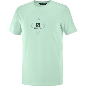 Salomon Bomuld SS T-shirt Herrer, grøn